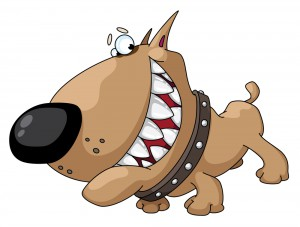 Hundetraining für Problemhunde