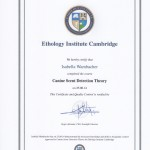 leinenlos_nasenarbeit_zertifiziert